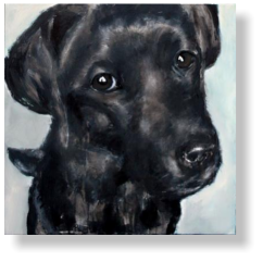 LABRADOR PUP 10 months old, 50 : 70 cm acrylic paint, mixed media, canvas